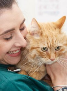 Veterinary nurse with ginger cat